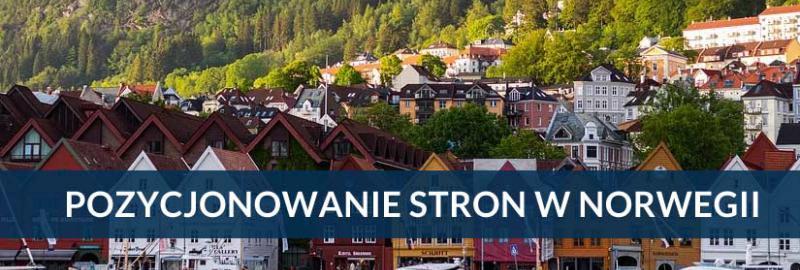 Pozycjonowanie stron i sklepów internetowych Norwegia