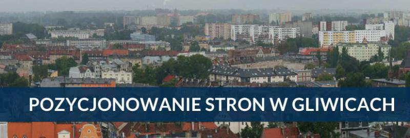 Pozycjonowanie stron i sklepów internetowych w Gliwicach